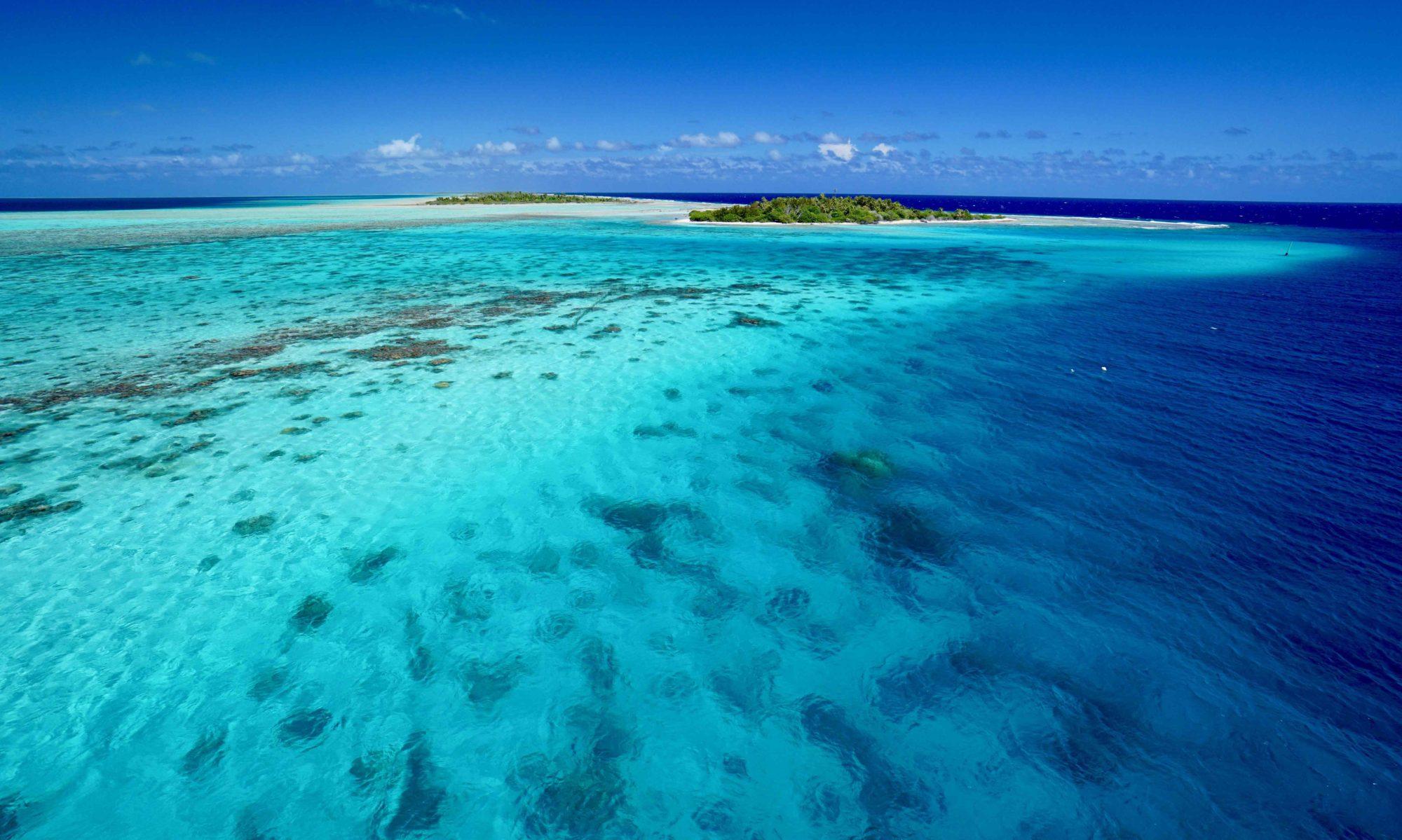 Voile Polynesie